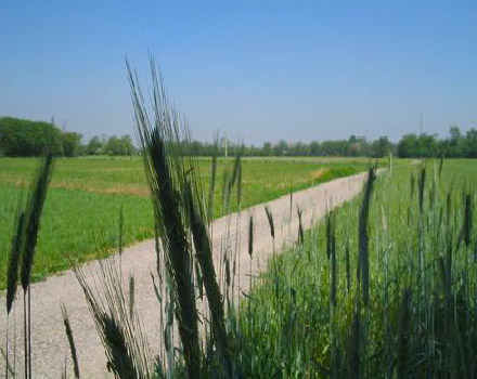 Agriturismo Il Parco Arluno Milano 06