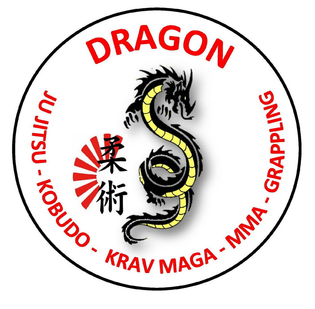 Dragon Ju Jitsu Dojo palestra arti marziali_001
