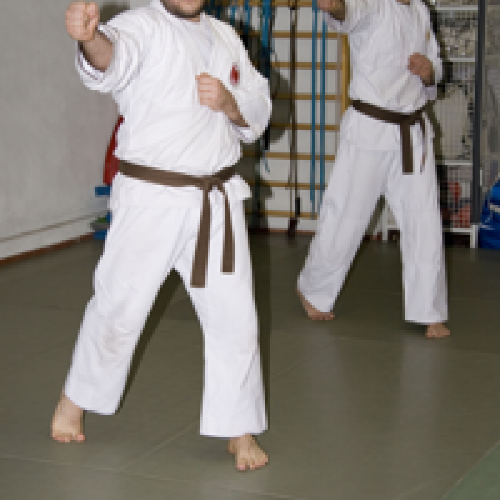 Il Dojo Nippon Kempo Club arte marziale da combattimento e da difesa Cassano Magnago